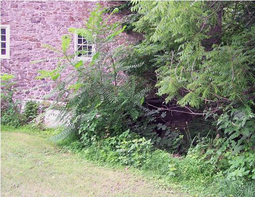 Spotts Grist Mill